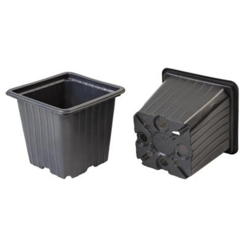 Vazonėlis daigams, plastikinis, 8x8x7 cm