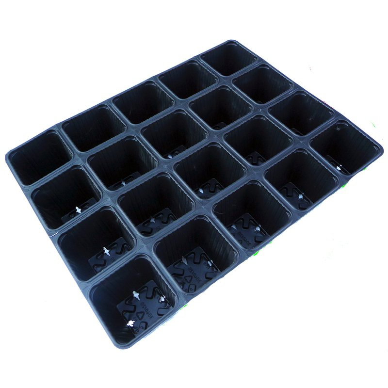 Plastikinė daigykla, 20 narvelių